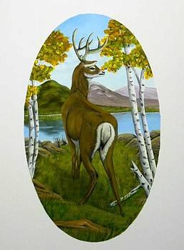 Teddy's Deer by Sheri Keith