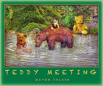 Teddy's Water Splash by Hanny Heim