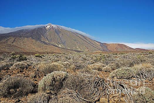 Compuinfoto  - Teide nature