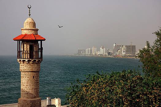 Zoriy Fine - Tel Aviv Jaffa