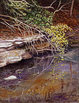 Tellico Reflections by Jackie Langford