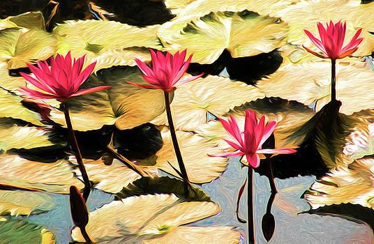 Temple Lotus Pond by Dennis Cox Photo Explorer