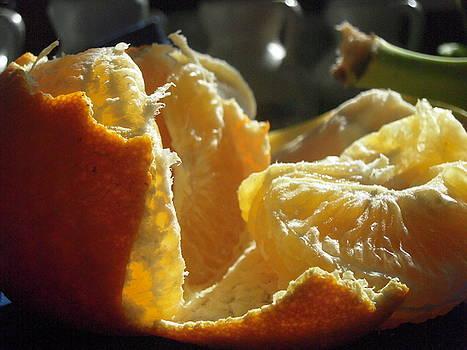 Temple Orange by Susan Gauthier