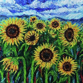 Ten Suns by Elizabeth Cox