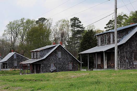Tenent Houses by Carolyn Ricks