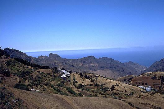 Flavia Westerwelle - Tenerife II