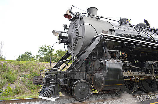 Tennessee Valley Railroad Museum by Linda Geiger