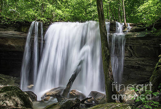 Tennessee Waterfall by Christopher L Nelson