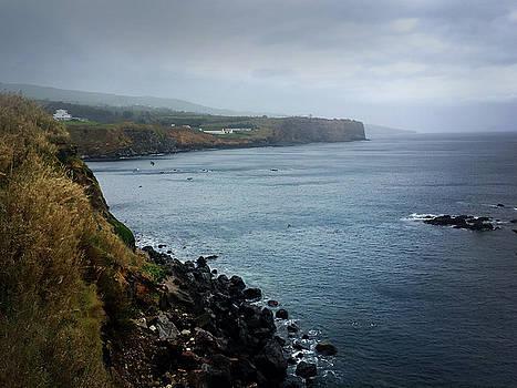 Terceira Coastline by Kelly Hazel