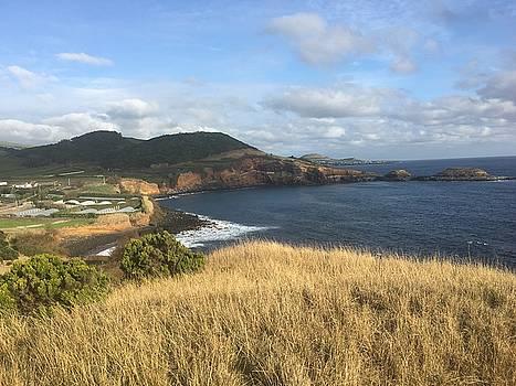 Terceira coastline, The Azores, Portugal by Kelly Hazel