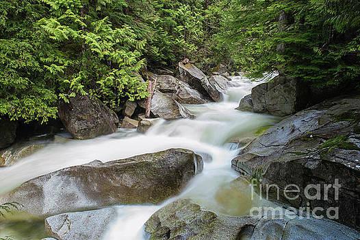Teripoki Creek by Rod Wiens