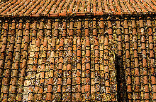 Terra-cotta roof Capri Italy by Xavier Cardell
