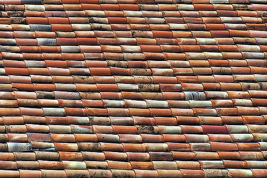Nikolyn McDonald - Terra Cotta - Roof Tiles