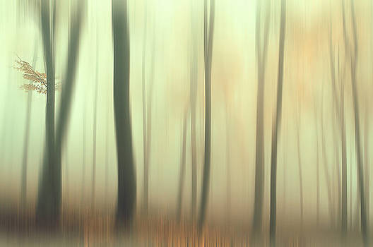 Jenny Rainbow - Terra Incognita. Impressionism