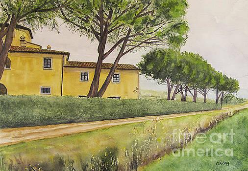 Terre dei Cavalieri 1 by Carol Flagg