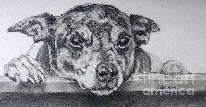 Terrier Attitude by Susan A Becker