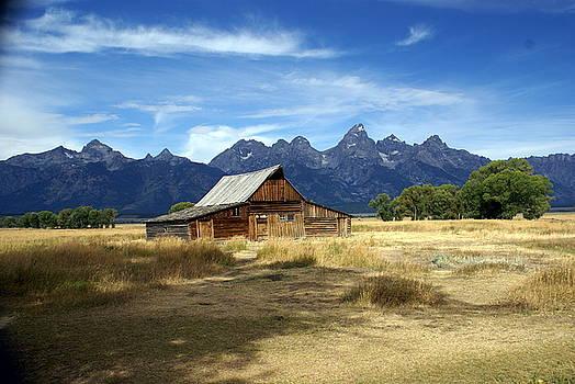 Marty Koch - Teton Barn 3