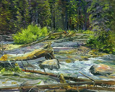 Teton Creek Pleinaire by Steve Spencer