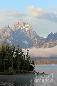 Teton Early Morning by Paula Guttilla