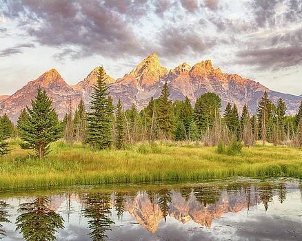 Teton Morning by Mary Hone