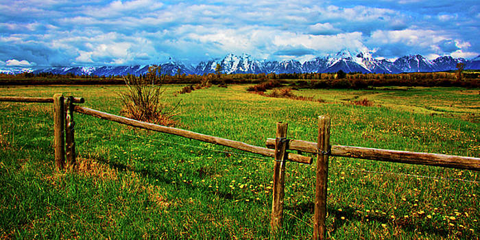 Teton Park Spring by Norman Hall