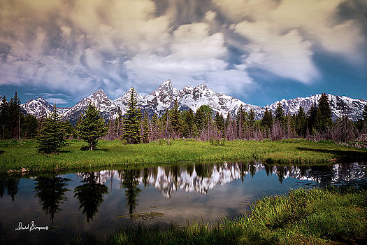 Teton Reflection by David Simpson