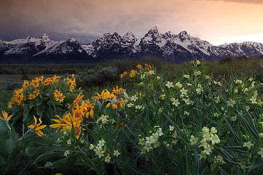 Tetons in a mood by Michael Grasseschi
