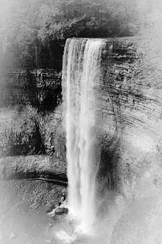 Tews Whitemist Falls BW by Daniel Thompson