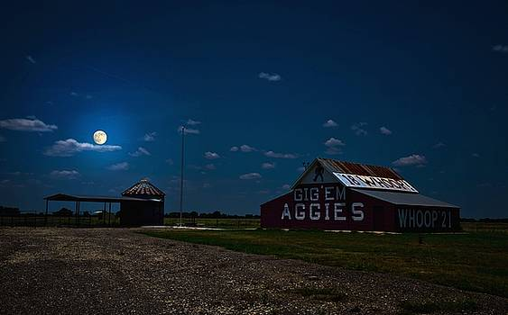 Texas Aggies by Linda Unger