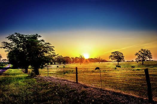 Barry Jones - Texas at Dawn