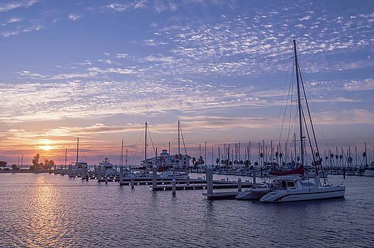 Texas Coast at Sunrise 2 by Leticia Latocki