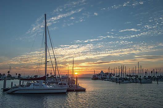 Texas Coast at Sunrise 5 by Leticia Latocki