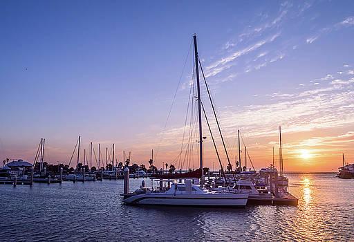 Texas Coast at Sunrise  by Leticia Latocki