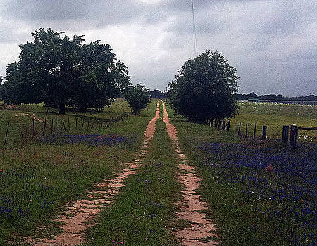Texas Country Road by Vickie Judkins
