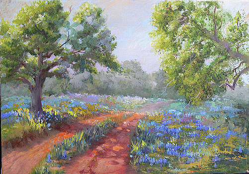 Texas Hill Country Lane by Sandy Reese