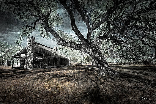Texas Homestead by Christine Hauber