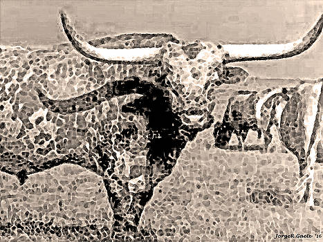 Texas Long Horn by Jorge Gaete