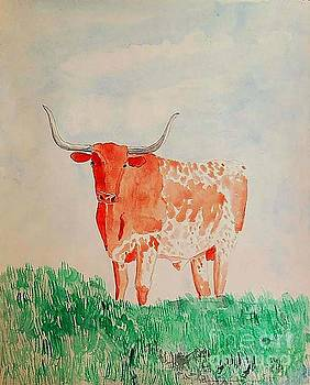 Texas Longhorn by Fred Jinkins