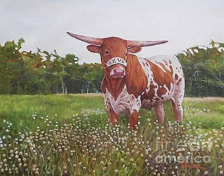 Texas Longhorn by Noe Peralez