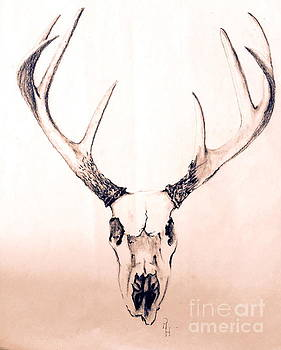 Texas Mount Deer by Rhonda Hancock