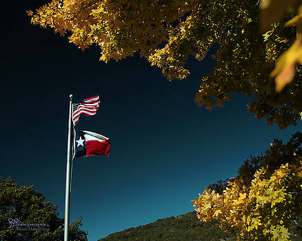 Texas Pride by Karen Musick