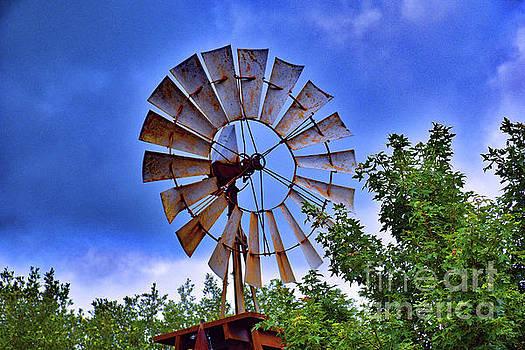 Texas Ranch Windmill by Ray Shrewsberry