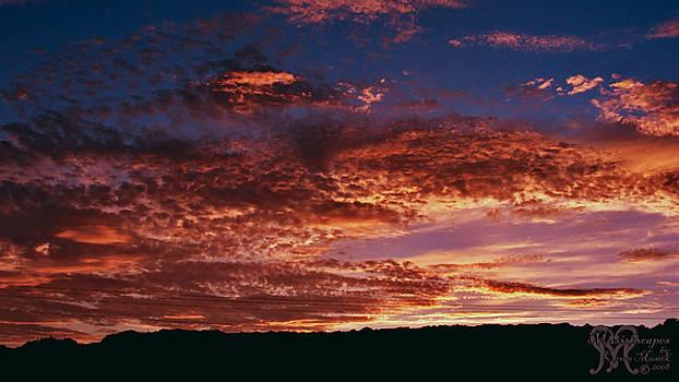 Karen Musick - Texas Style Sunset