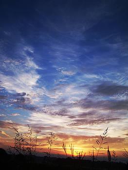 Texas Sunrise by Adam LeCroy