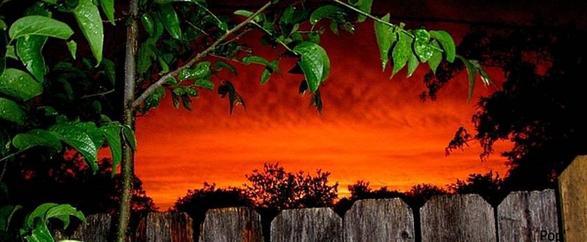 Texas sunset by James  Lalepop Becker