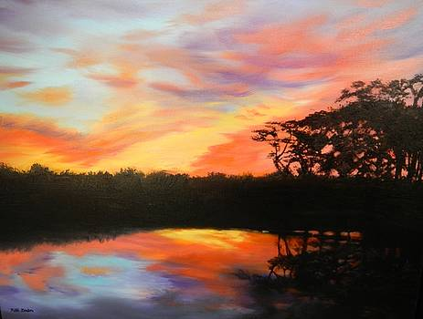 Texas Sunset Silhouette by Patti Gordon