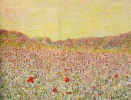 Texas Wildflowers by Glenda Crigger