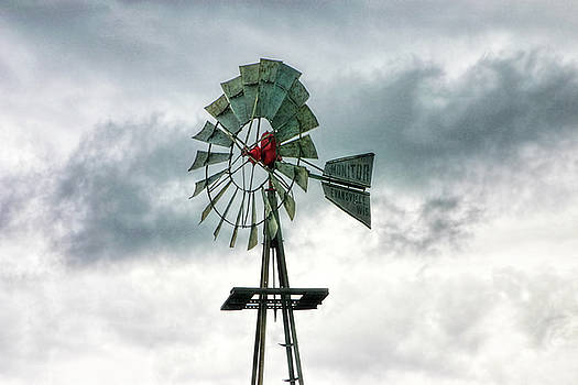 Texas Windmill by Joan Bertucci