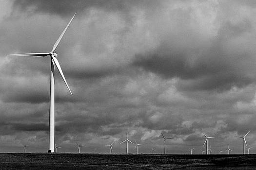 MARVIN JIMENEZ - Texas Windmill