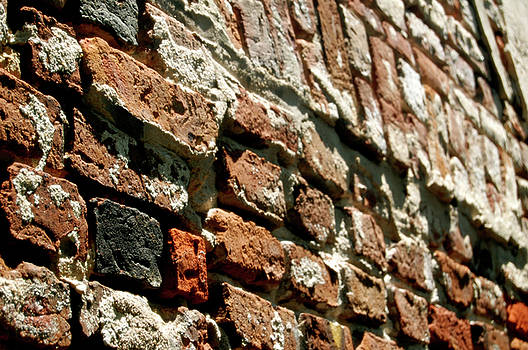 Texture of the Brick by Justin Ellis
